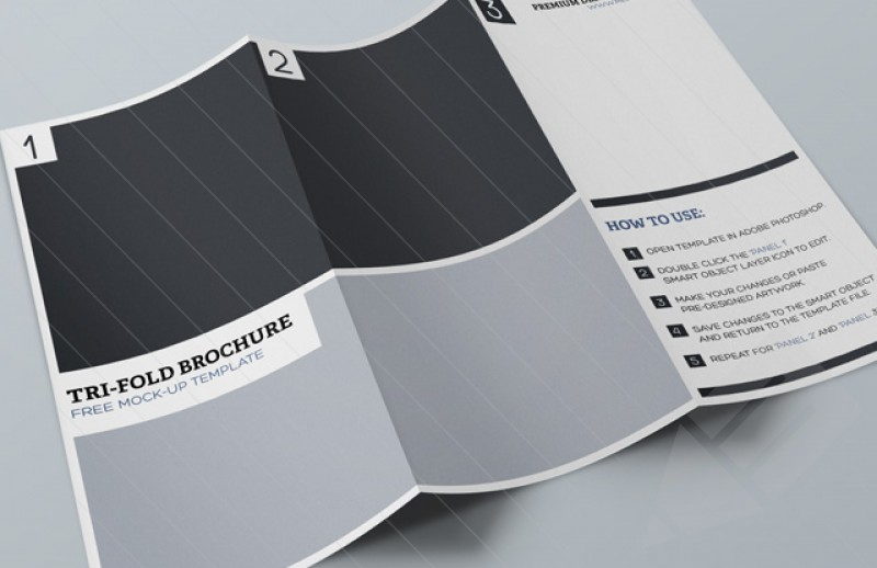 800x518_Free_Tri-Fold_Brochure_Mock-up_Preview1b